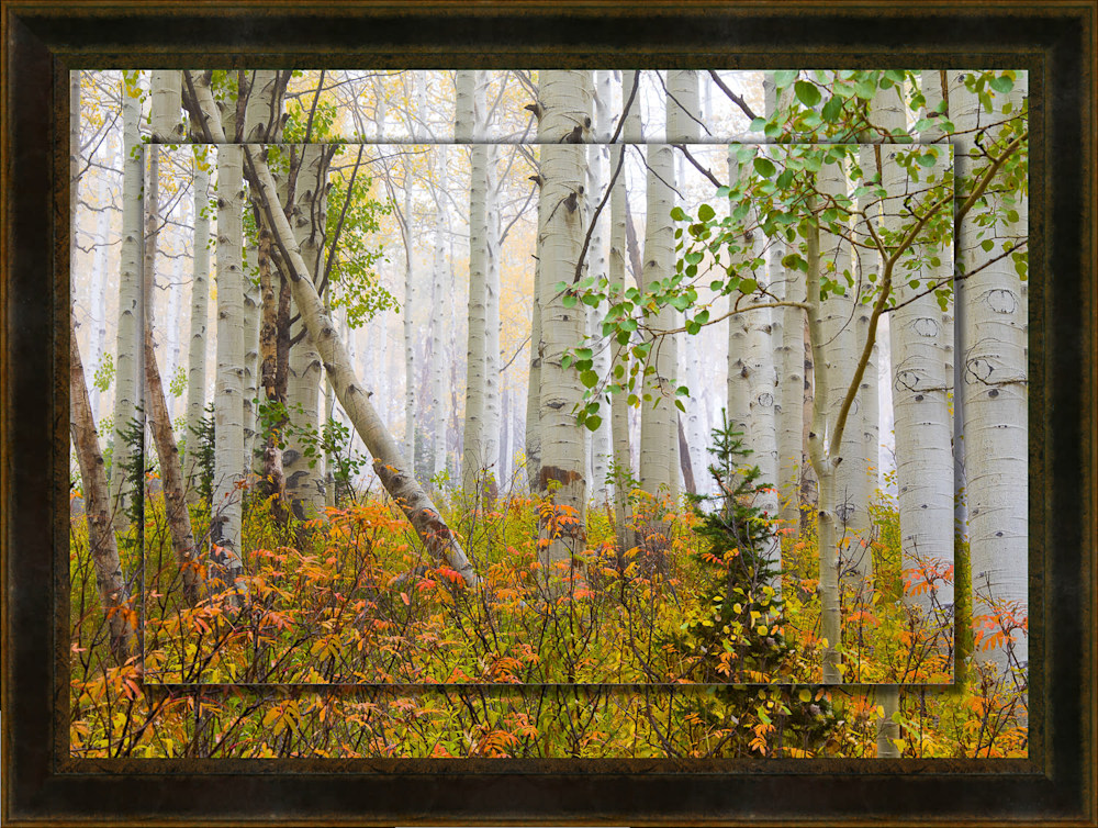 Aspen Pastel 20x30 to 26x36 Leather