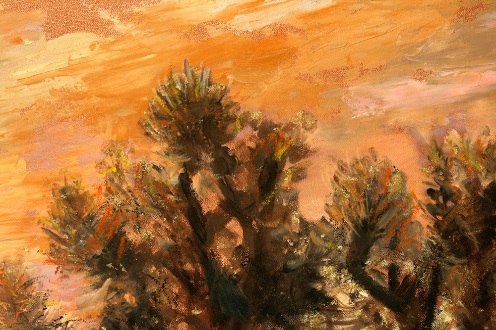 Sonoran Desert Joshua Tree Detail