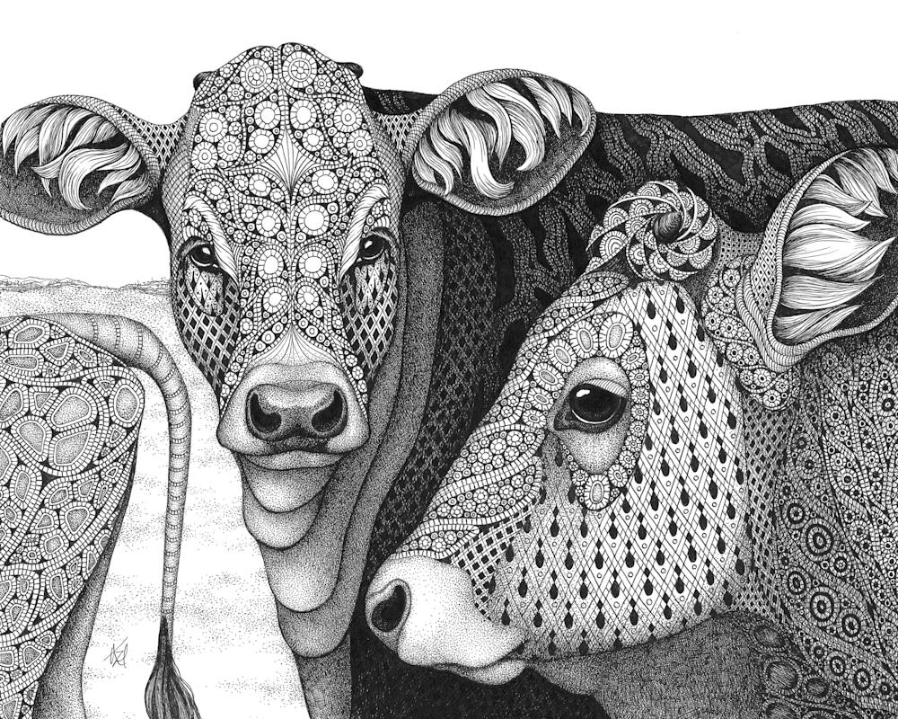 cows (The Herd)