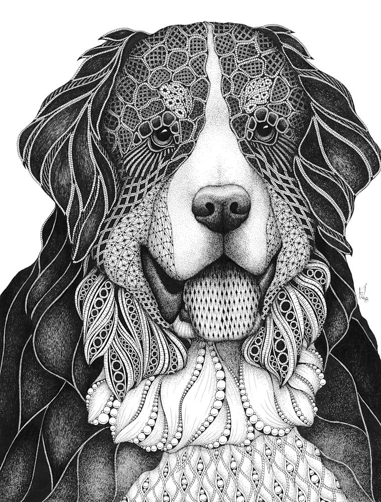 Bernese Mtn Dog