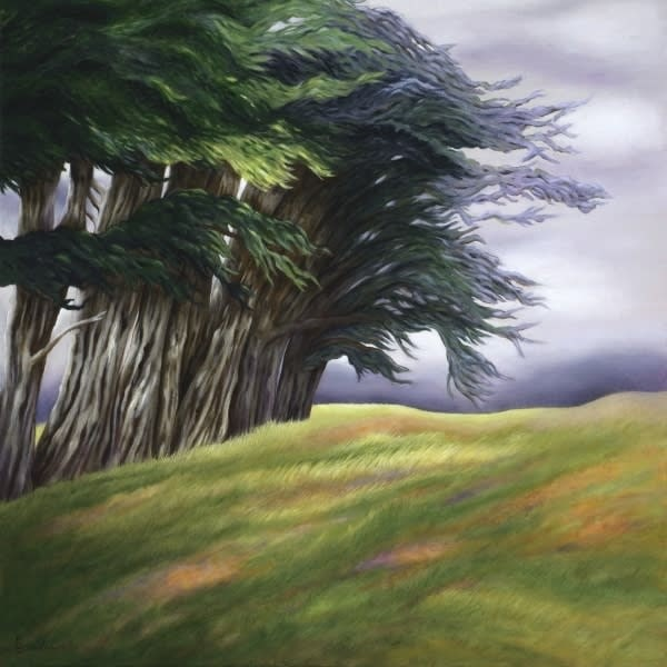 dream series cypresses and wildflowers