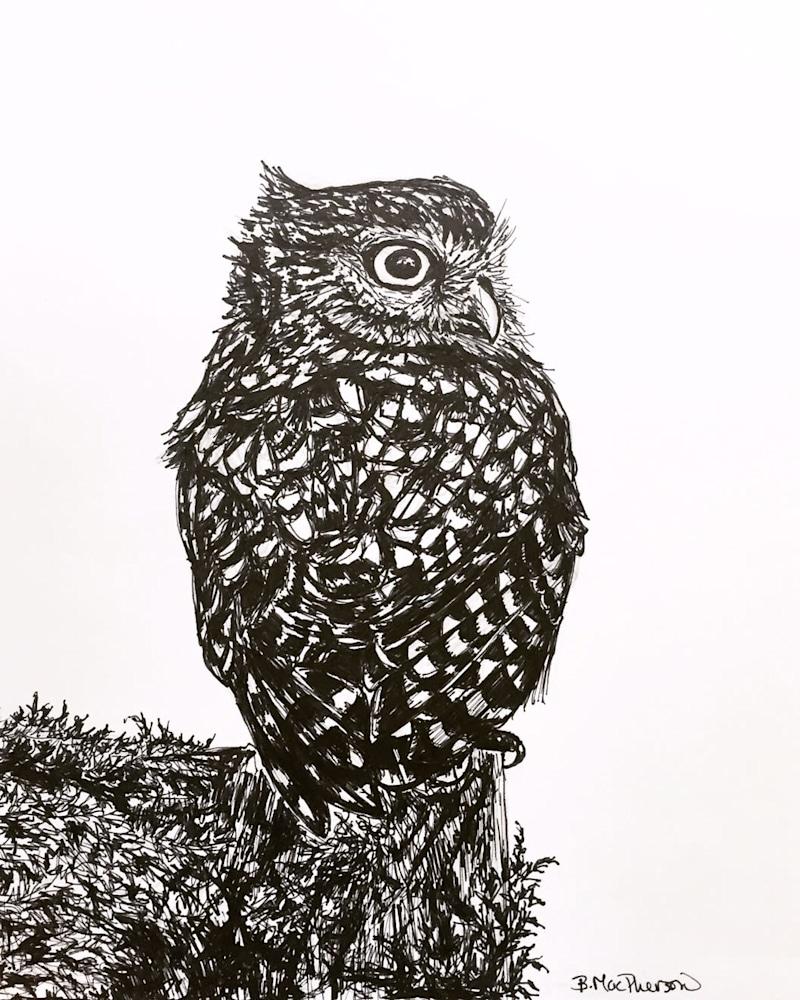 Tiny Owl Small