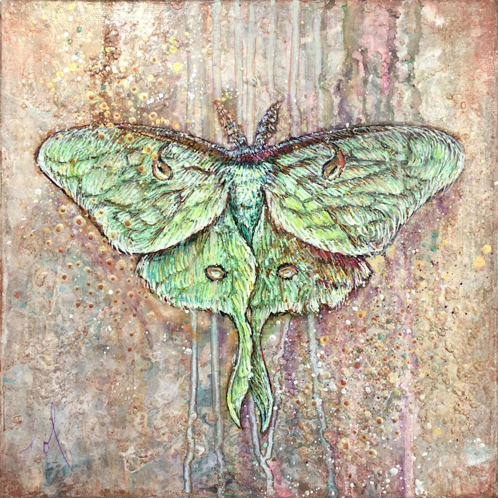 Light Guided Luna moth 01