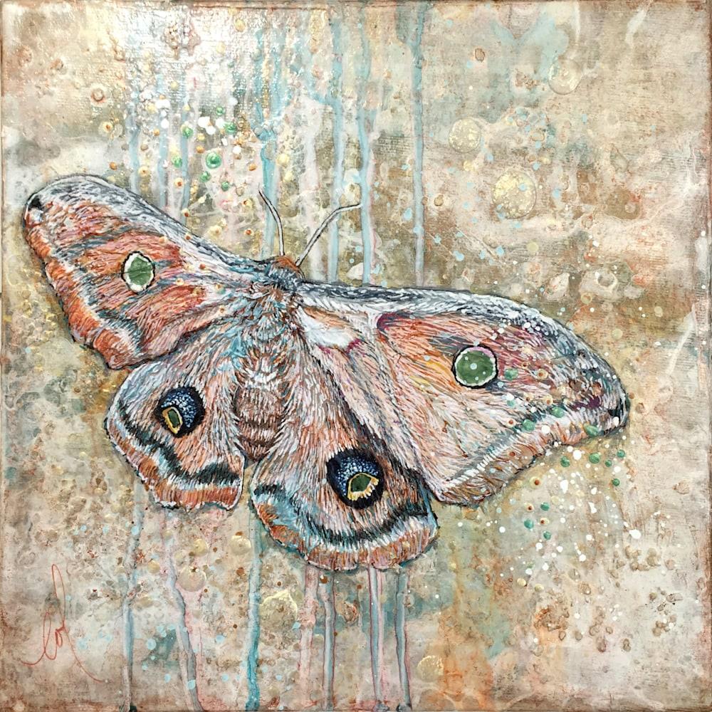 Light Guided Cyclops polyphemus moth 01