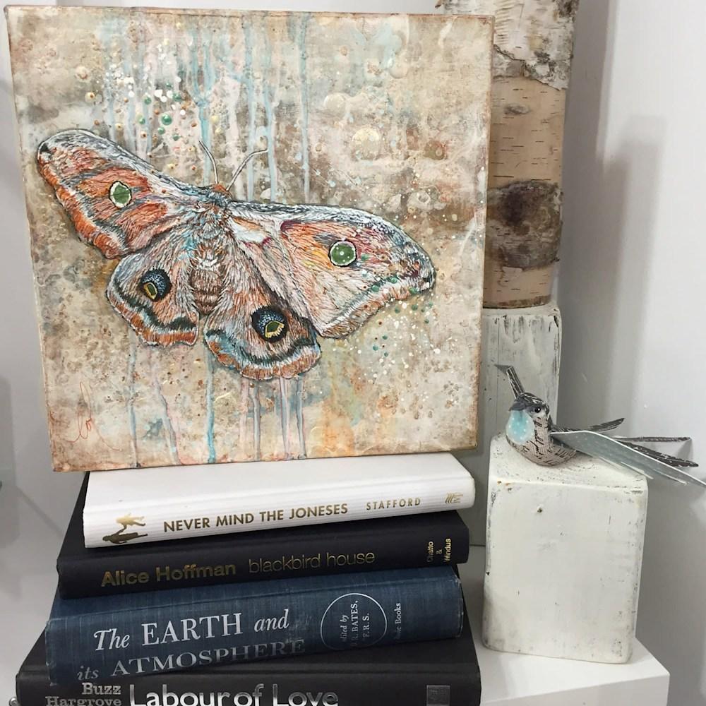 Light Guided Cyclops polyphemus moth 02