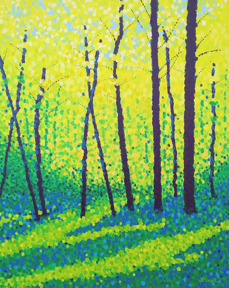 Morning Sun in the Woods Original