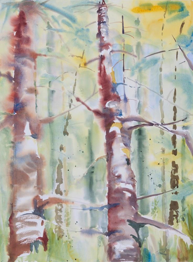 forest story 1 original