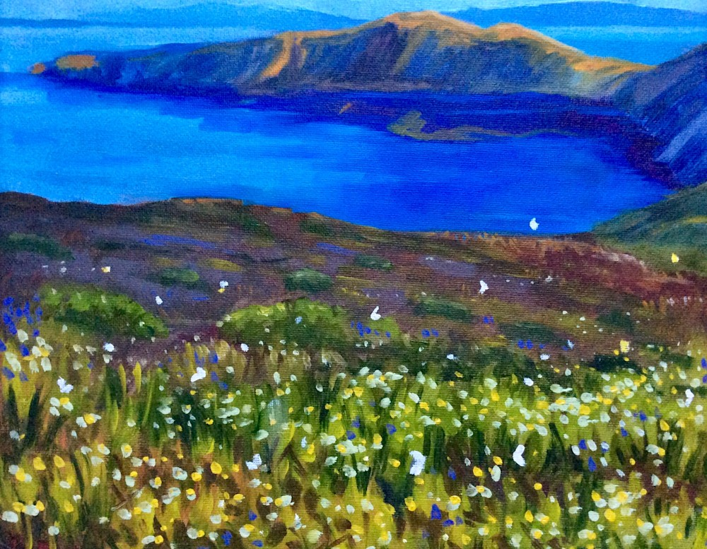View From the Slopes II Santorini Wildflowers and Butterflies Original Romantic Fine Art