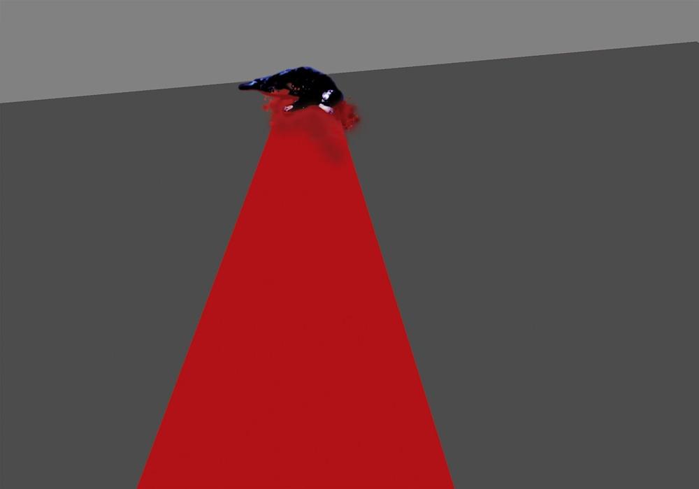 Act 1, Red Carpet, Mohammed Al Howajri 12
