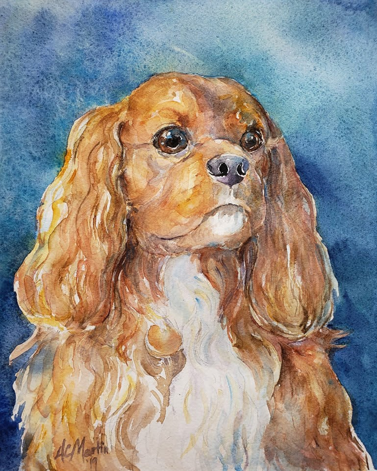 Augie dog portrait