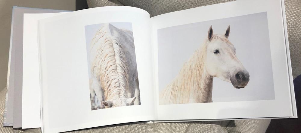 LareveBookInsidePages