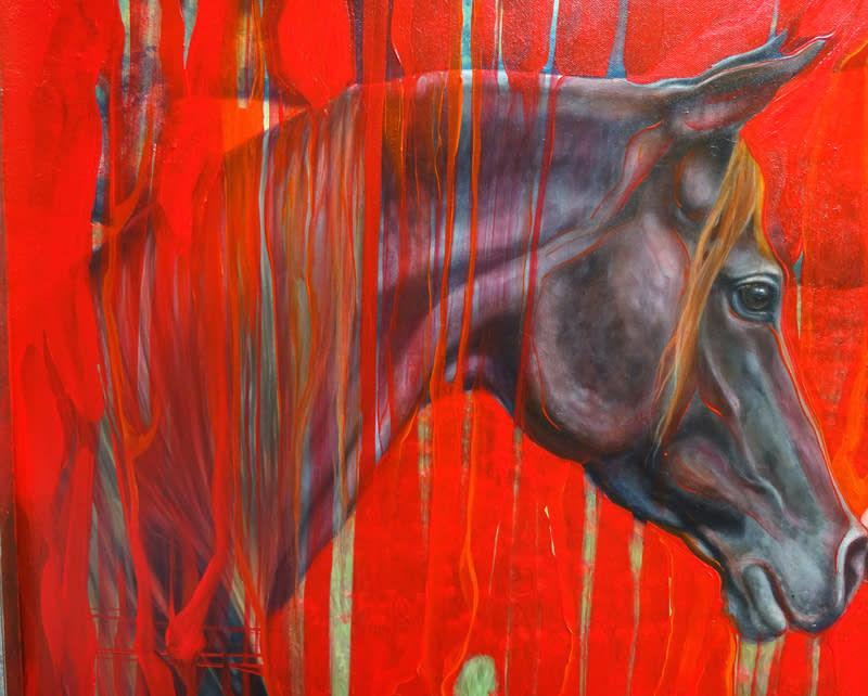 the horse dreamer d2 S