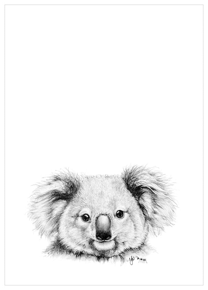 Koala   Pencil Drawing Print Files   A4