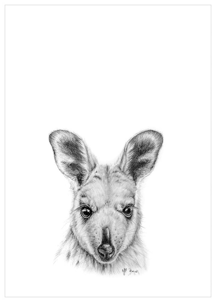 Wallaby   Pencil Drawing Print Files   A4