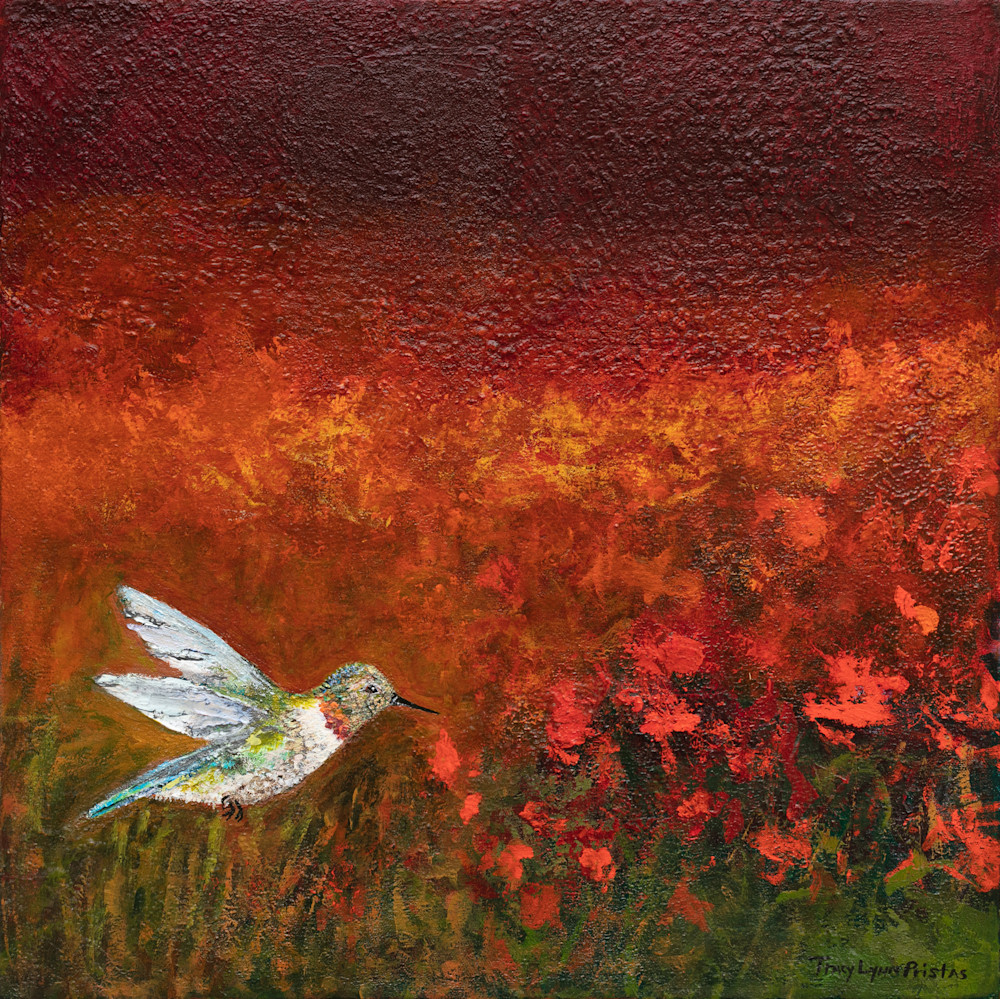 Tracy Lynn Pristas Hope Feathers Red Hummingbird Paintings