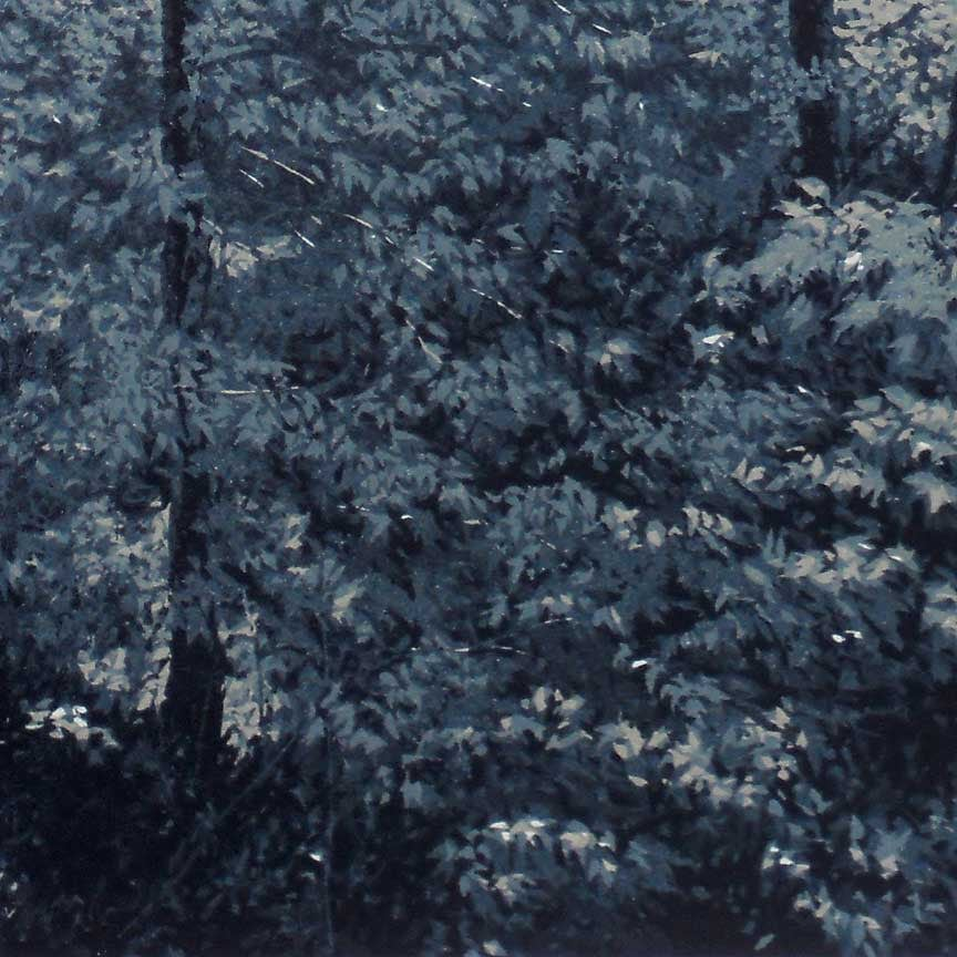 Forest in Moonlight detail 2