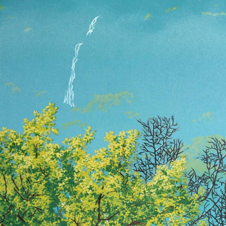 River Shroud Print Detail 2