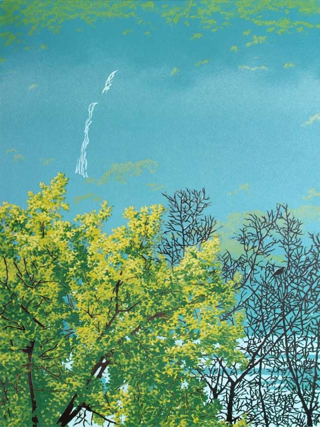 River Shroud Print