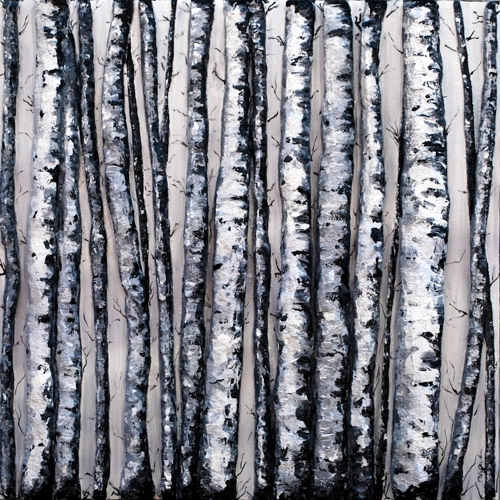 Winter's Contrasts 36 x 36