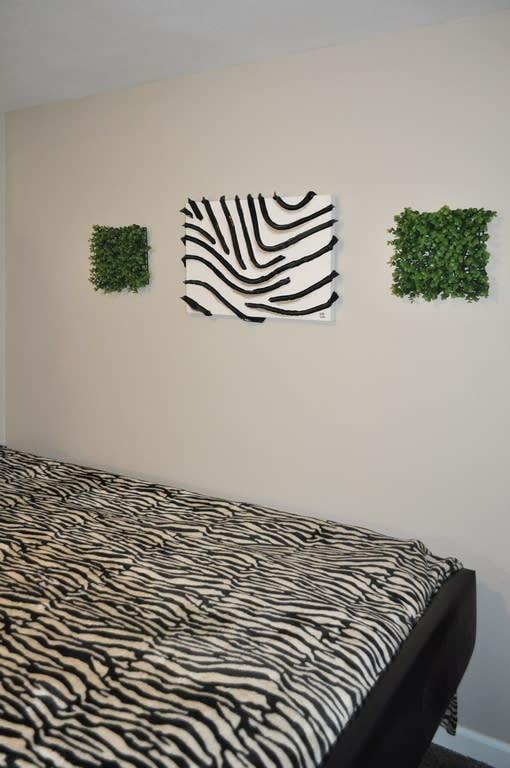 15 zebra stripes
