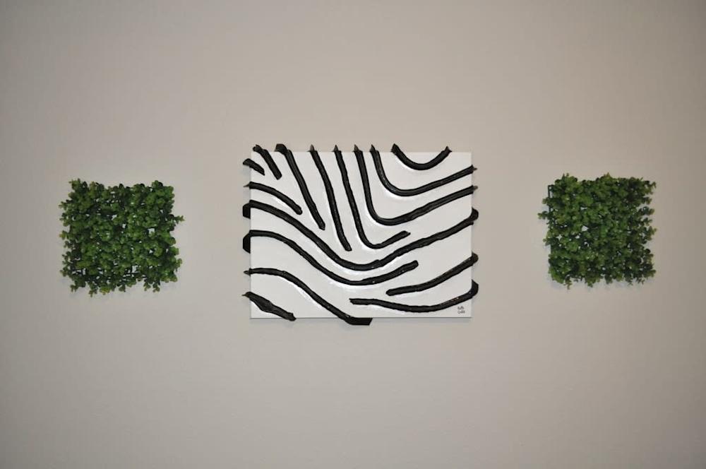 12 zebra stripes