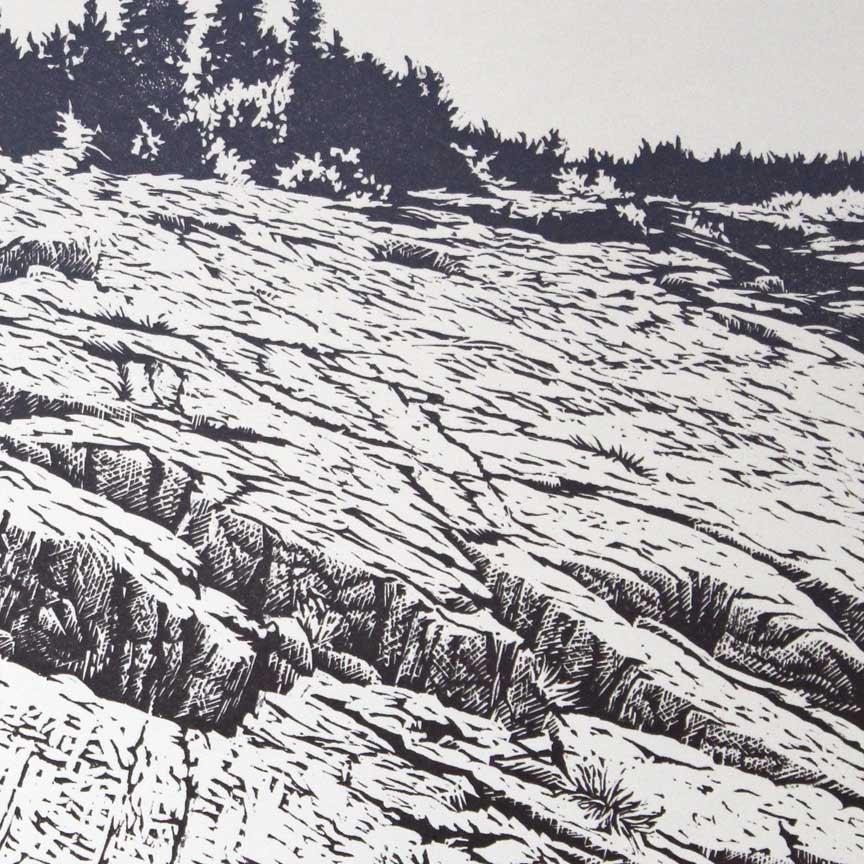 Acadian Coast detail 2