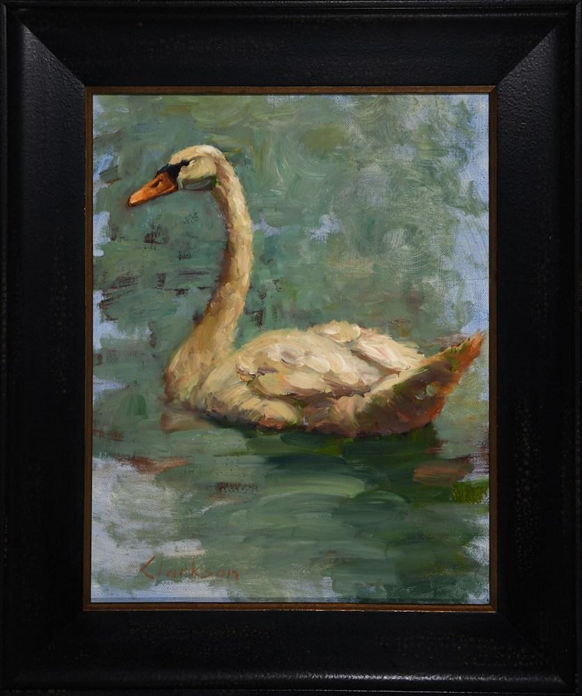 Mute Swan Framed asf