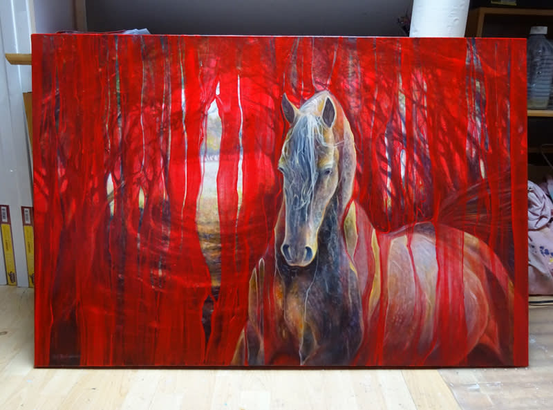 horse metamorphosis d1 S