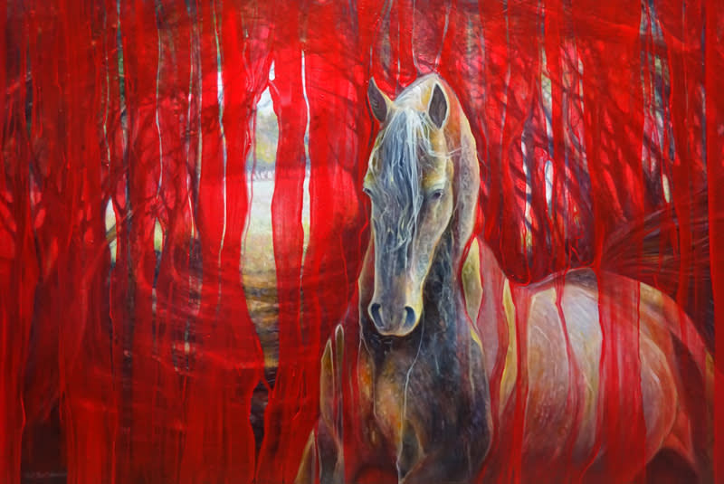 horse metamorphosis 72 S