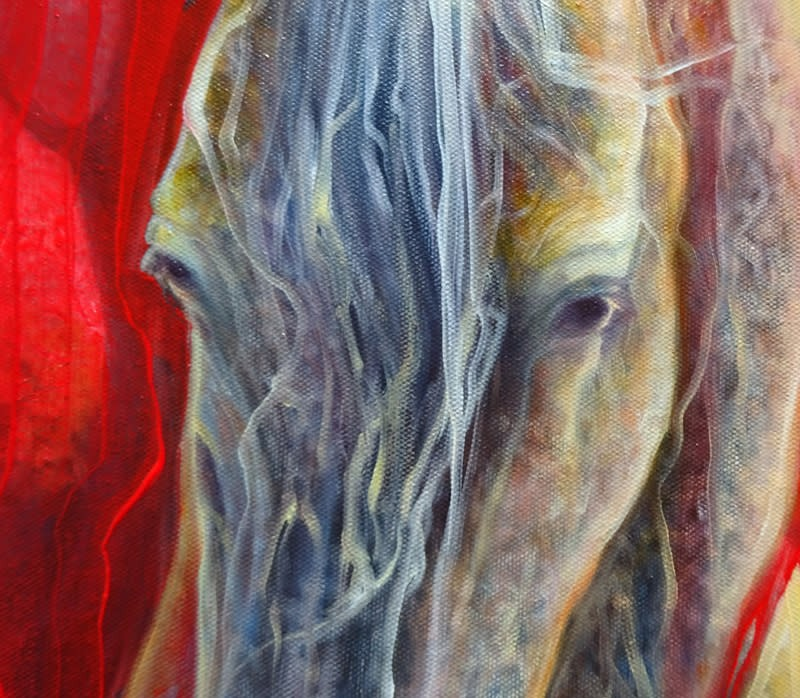 horse metamorphosis d2 S
