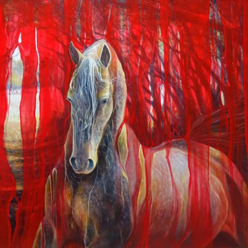 horse metamorphosis d3 S