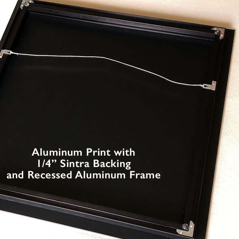 aluminum back