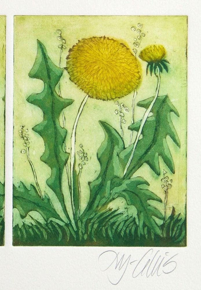 dandelion signature