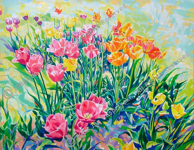 Tulips serig wC