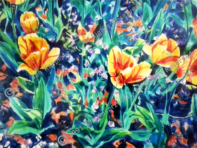 Yellow&Orange Tulips mono wC