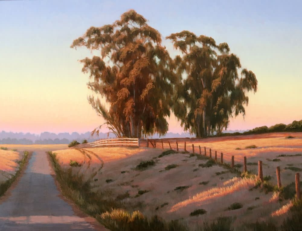 Early Morning Light 30