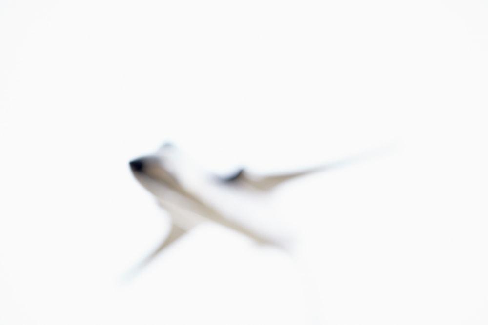 F 105