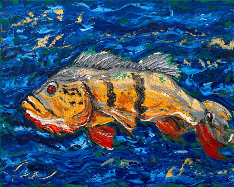 Amazon fish Tucunaré Art