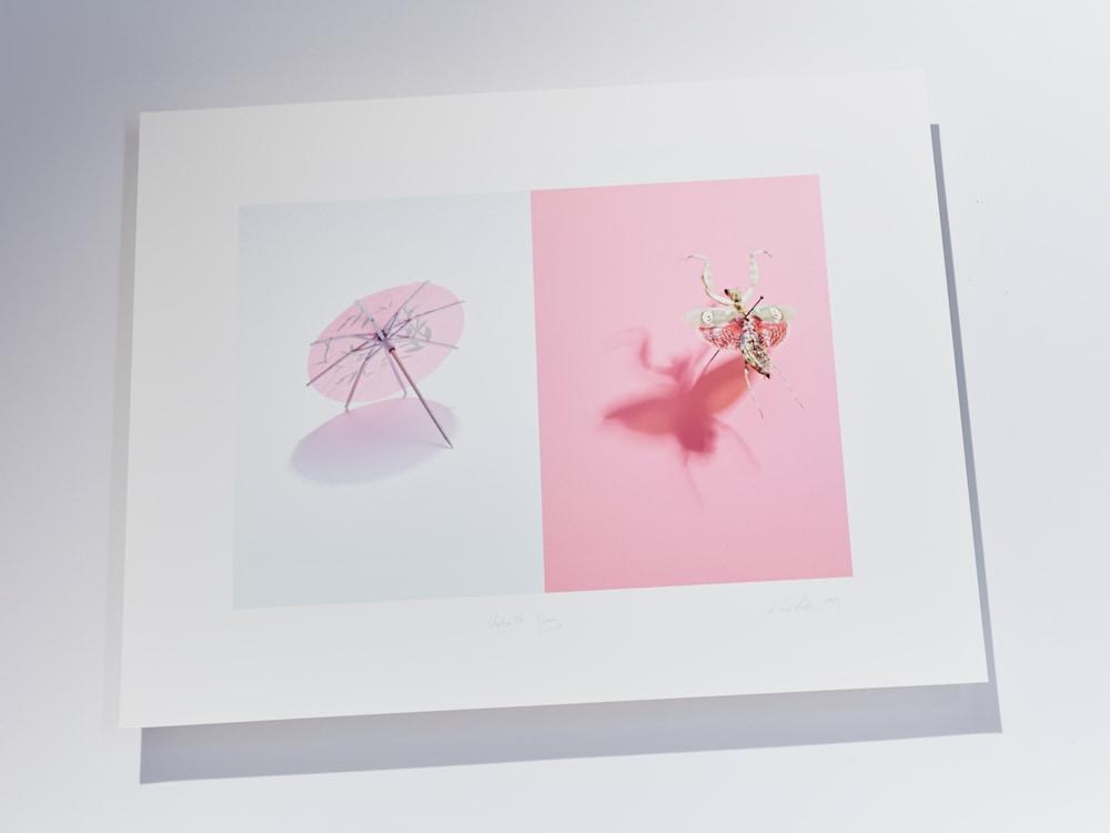 pink bug p
