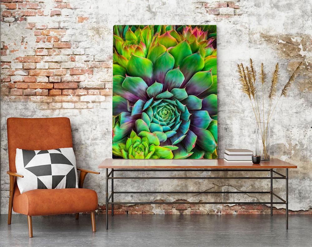 Succulents 1 ArtWall