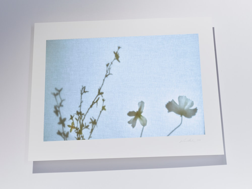 Screen flowers print