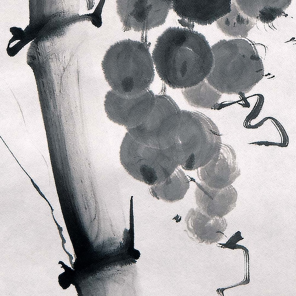 hombretheartist sumie grapes 1 detail