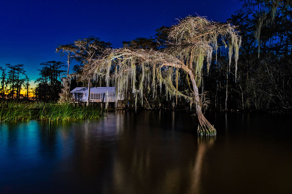 Andy Crawford Photography 190106 Lake Maurepas swamp 001
