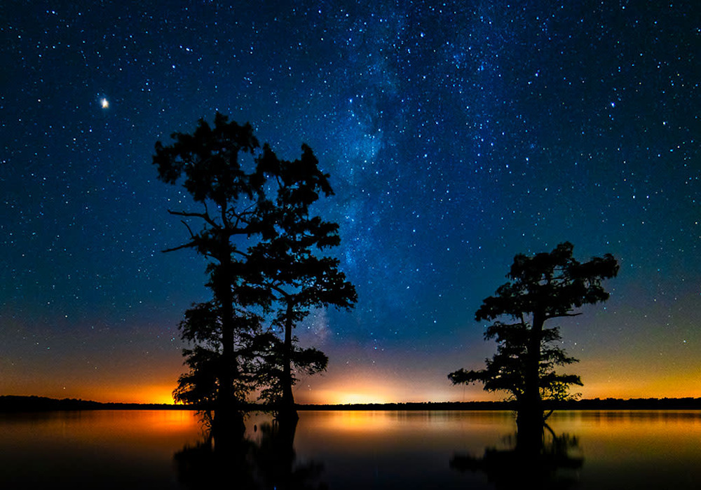 Andy Crawford Photography Atchafalaya Basin swamp photo