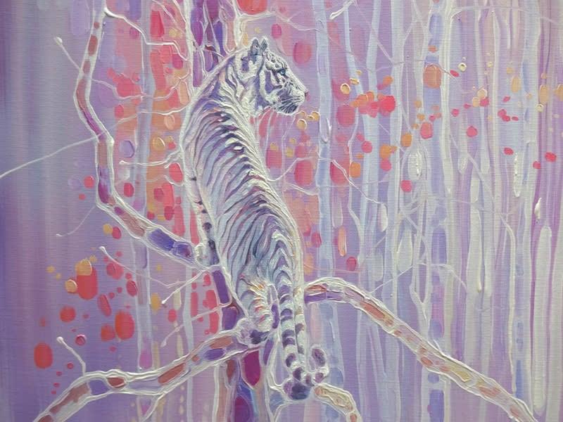 Tiger Haven d1 S