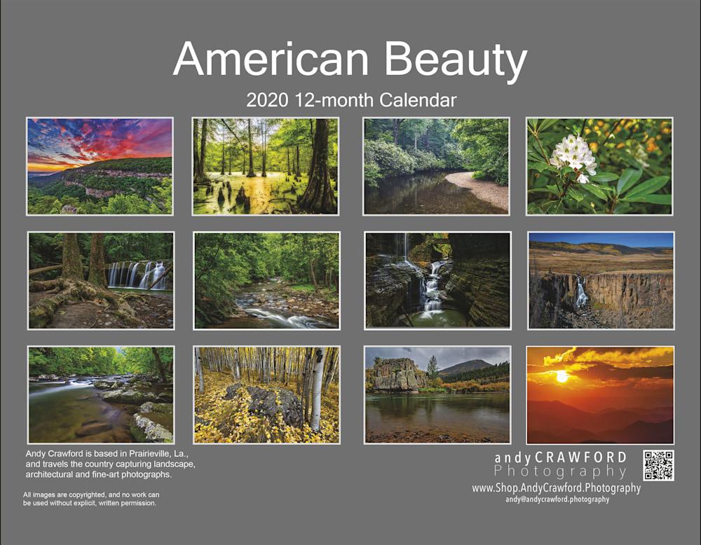 ACP 2020 Calendar back page
