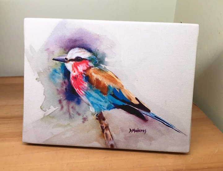 jims bird mini canvas front