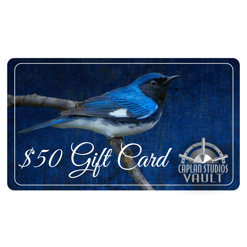 gift card50 800px