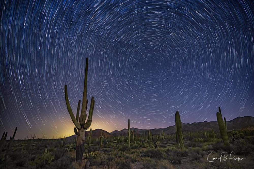 STAR TRAILS IN THE TUCSON MOUNTAIN PARK
