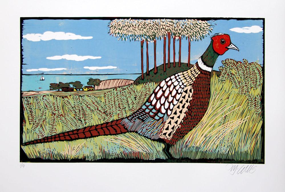 Pheasant Land